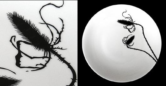 herbier-porceleine.jpg